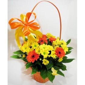 Корзина с цветами Желтый кот