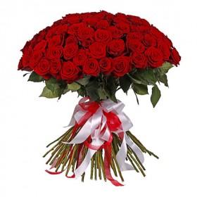 101 красная роза роза