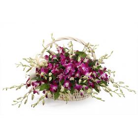 Корзина цветов с орхидеями дендробиум