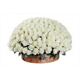 Корзина цветов из 201 розы