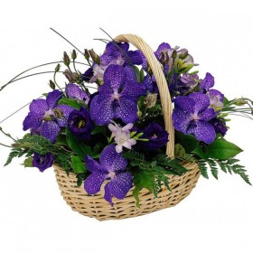 Корзина с орхидеями №323