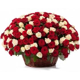 Корзина из 201 красной и белой розы