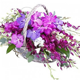 Корзина с орхидеями №317
