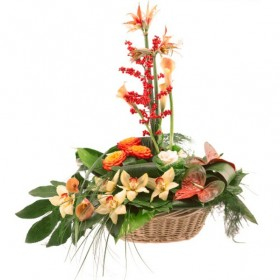 Корзина экзотических цветов №316
