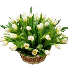 Корзина с тюльпанами Ришелье