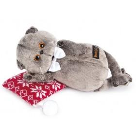 Кот Басик на подушке